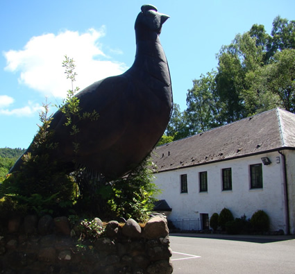 the-famous-grouse-distillery
